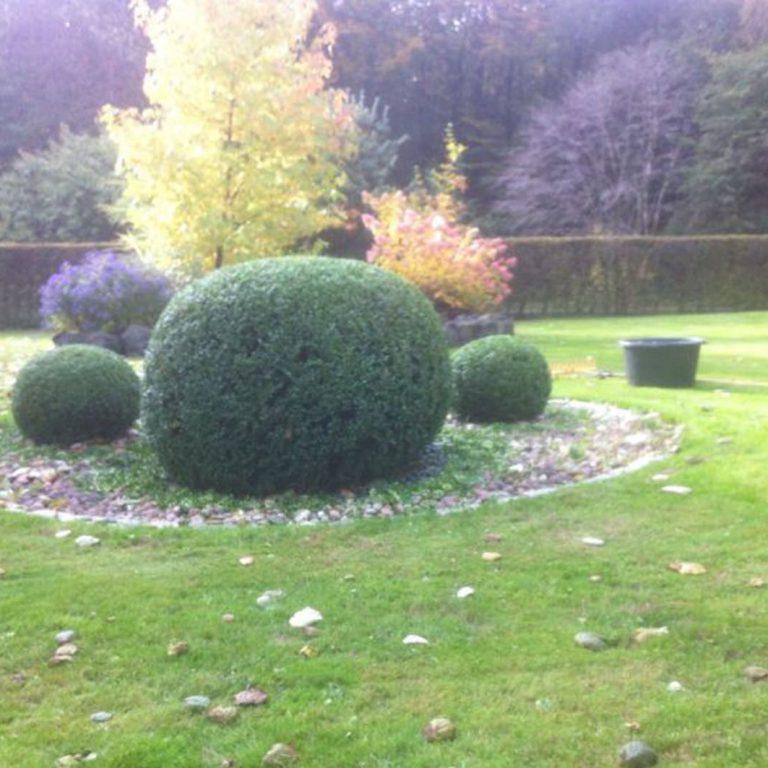 Pielęgnacja ogrodów 3