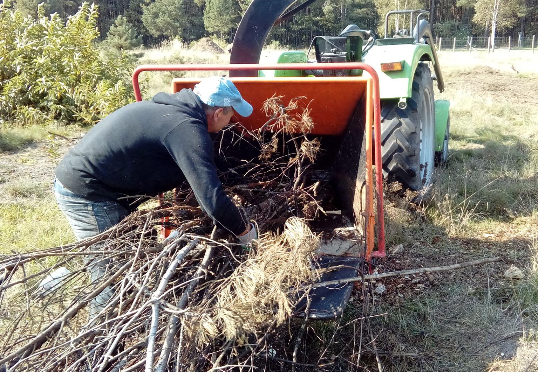zrębkowanie krzewów rzeszów, głogów młp podkarpackie 1